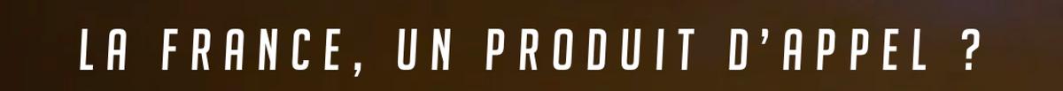 Shopflex logo